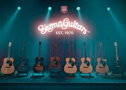 Sigma guitars 211020 small